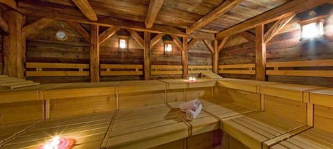 Tyrolean Steam Room